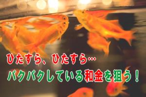 パクパクしている金魚