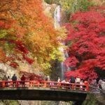 箕面の紅葉(箕面大滝)