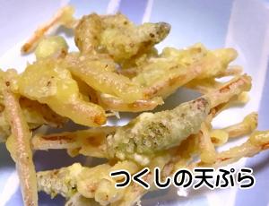 つくしの天ぷら