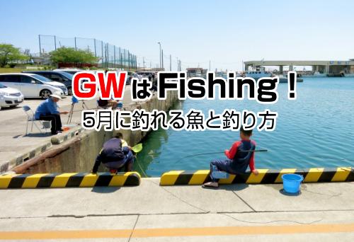GWは釣り
